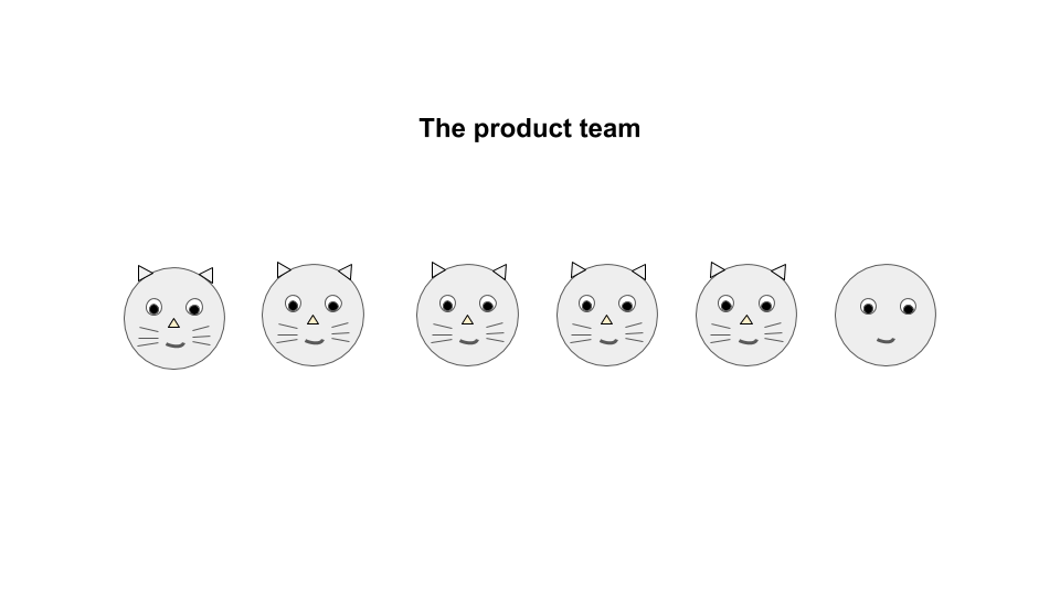 the product team